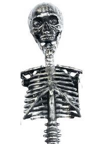 Бутафория скелета серого