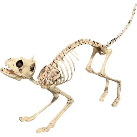 Бутафория Скелет Кошки