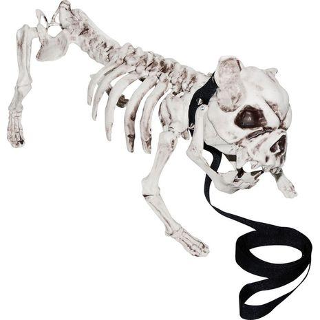 Бутафорский скелет бульдога