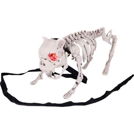 Бутафорский скелет Собаки