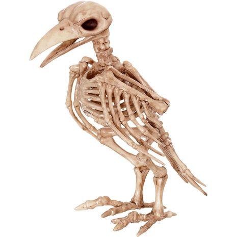 Бутафорский скелет ворона