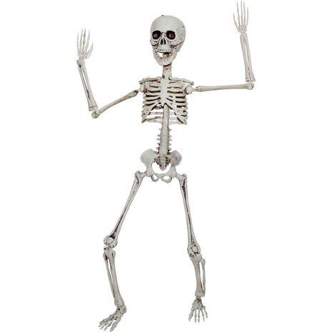 Бутафорский стоячий скелет