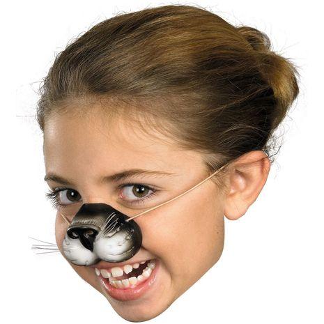 Нос кота